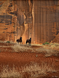 Canyon Dwellers Photographic Print by David Drost