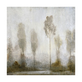 Misty Marsh II Premium Giclee Print by Tim O'toole