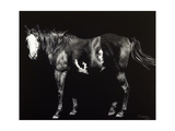 Bald-Faced Broodmare Prints by Julie Chapman
