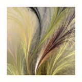 Fountain Grass I Posters by James Burghardt
