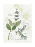 Rosemary and Sage Prints by Elissa Della-piana