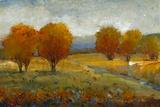 Vivid Brushstrokes II Art by Tim O'toole