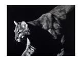 Prowler Prints by Julie Chapman