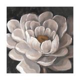 Neutral Fleur I Art by Tim O'toole