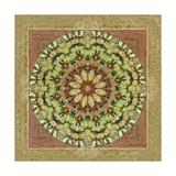 Floress Mandala IV Poster par Catherine Kohnke