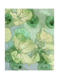 Mint Progeny III Premium Giclee Print by Sharon Chandler