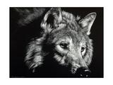 Wild Eyes Plakater af Julie Chapman