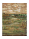 Autumn Sky II Prints by Beverly Crawford