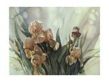 Hadfield Irises II Posters by Clif Hadfield