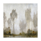 Misty Marsh I Prints by Tim O'toole
