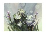 Hadfield Irises III Art by Clif Hadfield