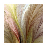 Fountain Grass II Prints by James Burghardt