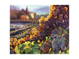 Tuscany Harvest Giclee-tryk i høj kvalitet af Clif Hadfield