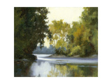 River Reflections Poster by Barbara Chenault