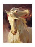 Blanco Prints by Carolyne Hawley