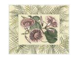 Tropical Flowers in Bamboo I Prints