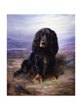 A Spaniel in the Highlands Gicléetryck av Lilian Cheviot
