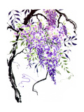 Wisteria Garden I Posters by Nan Rae