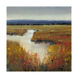 Marsh Land I Art by Tim O'toole