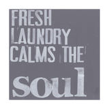 Fresh Laundry II Poster van Deborah Velasquez