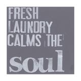 Fresh Laundry II Posters by Deborah Velasquez
