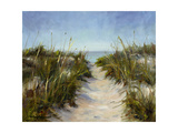 Seagrass and Sand Prints by Barbara Chenault