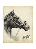 Whirlaway Print by R.H. Palenske