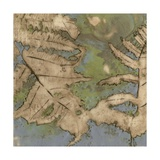 Fern Lake II Posters by Jennifer Goldberger