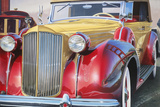 '38 Packard Phaeton Body Posters by Graham Reynolds
