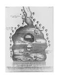 Engraving of Beaver Pond Giclee Print