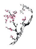 Plum Blossom Branch II Posters af Nan Rae