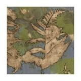 Fern Lake I Prints by Jennifer Goldberger