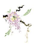 First Blossom Prints by Nan Rae