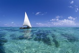 Dhow on Clear Seas Fotografisk tryk af Paul Souders