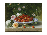 Strawberries in a Blue and White Buckelteller with Roses and Sweet Briar on a Ledge Giclee Print by William Hammer