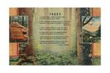 Joyce Kilmer Trees Poem, Forest Giclee Print
