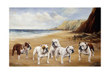 Bulldogs on a Beach Giclee Print by Reuben Ward Binks