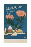 Bermuda in Oleander Time, Travel Poster Giclee Print