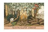 Australian Jarrah Travel Poster Giclée-tryk
