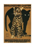 Leopard and Panther, Munich Zoo Giclee Print