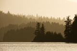Summer Sunset Lights Rainforest Along Afognak Bay Photographic Print by Paul Souders