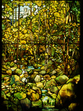 Tiffany Studios Leaded Glass Window of a Woodland Scene Photographic Print