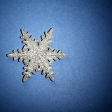 Decorative Snowflake Photographic Print by Sean Justice