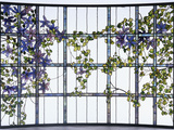 Tiffany Studios 'Clematis' Leaded Glass Three-Sectioned Skylight Fotografická reprodukce