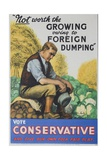 Not Worth Growing Owing to Foreign Dumping, Vote Conservative, British Political Poster Giclee Print