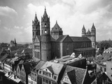 Cathedral of Worms Photographic Print by H. Glassner