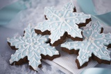 Delicious Christmas Cookies Photographic Print by Tammy Hanratty