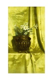 Narcissus in a Brass Vase Giclee Print by De Scott Evans