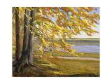 Lake Starnberg Giclee Print by Wilhelm Trubner
