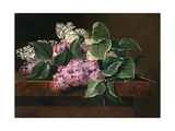 Lilac on a Ledge Giclee Print by Johan Laurentz Jensen